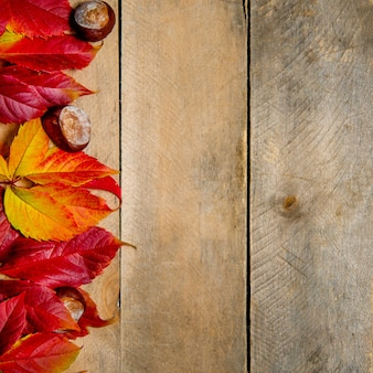 Autumn bright yellow-red leaves on a wooden background. with copy space. composition of chestnuts