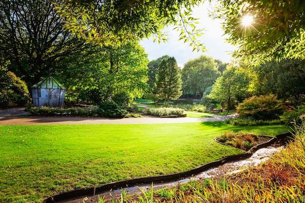새 새장, 단풍, 태양이 있는 가을 도시 공원. 자연 가을 풍경 배경