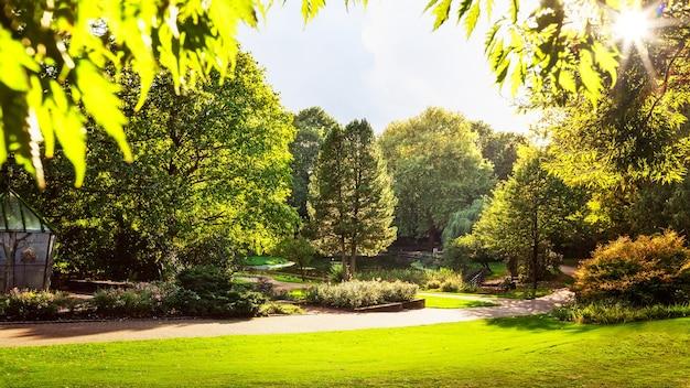 새 새장, 호수, 태양이 있는 가을 도시 공원. 아름다운 자연 가을 풍경 배경