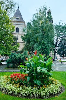 Autumn cloudy kosice city (slovakia) landscape with flower bad. all people are unrecognizable.
