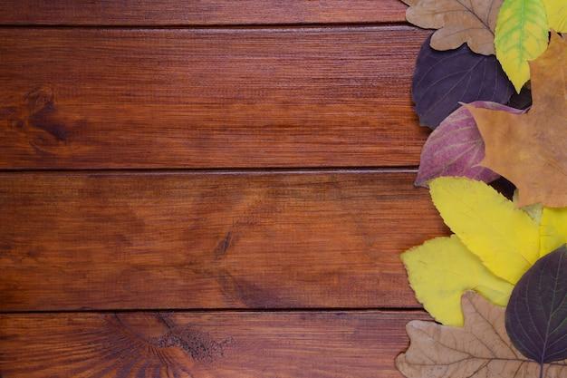Осенние разноцветные листья лежат на коричневом деревянном фоне с правой стороны