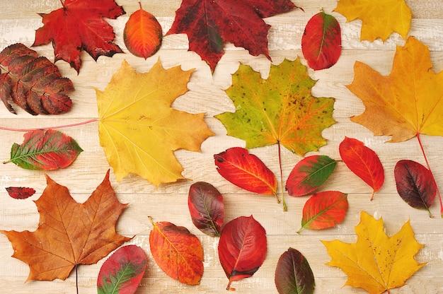 木製の背景に秋の色とりどりの葉-上面図