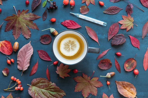 Autumn coloured leaves, ripe rosehip berries with a cup of hot tea with lemon, mercury thermometer with high temperature on blue background, flat lay