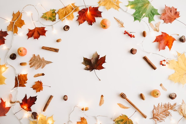 白い背景の上の紅葉で作られた秋の構成とフレーム上面図コピースペース