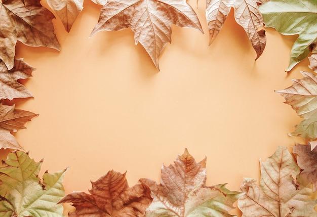秋の組成。茶色の背景にカエデの葉の秋のフレーム