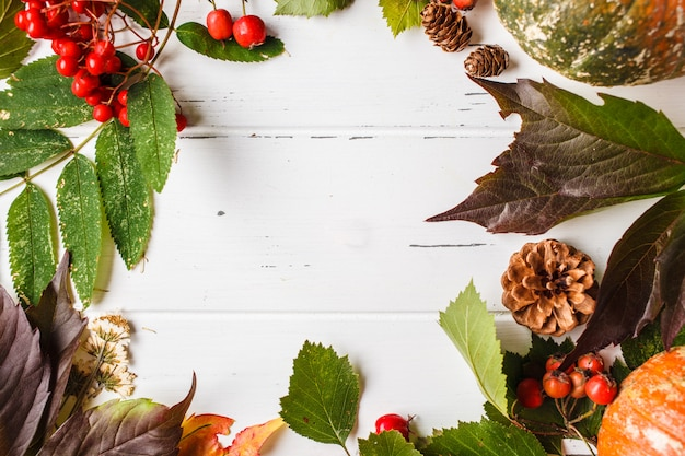 Autumn composition. autumn leaves, berries and pumpkin on white background, copy space.