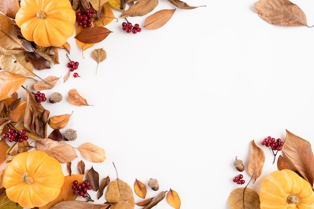 Autumn composition. autumn leaves and pumpkin on white