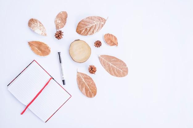 Осенняя композиция. книга и ручка, сухие листья на белом фоне. осень, осенняя концепция. плоская планировка, вид сверху, копия пространства