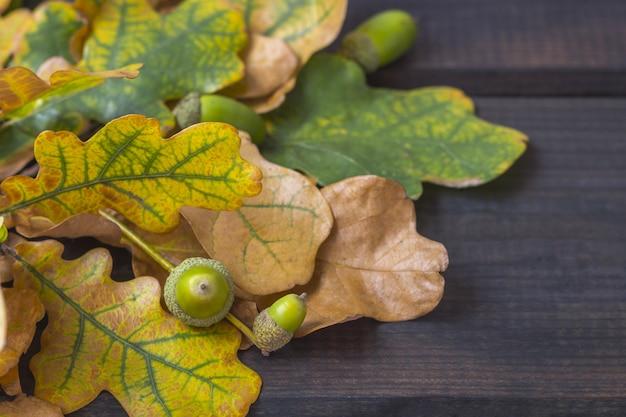 Autumn composition. bouquet of colorful autumn leaves