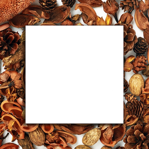 Autumn composition, collage, white paper, wood, dried flowers and buds on a white background