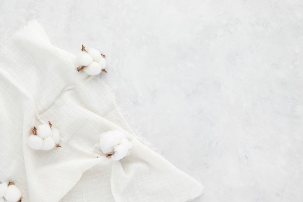 Autumn composition,  cotton flowers on white background. flat lay, top view with copy space