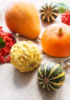 가을 구성, 아늑한 가을 시즌, 호박, 그리고 섬유 배경의 나뭇잎. 추수 감사절의 상징, 평평한 평신도