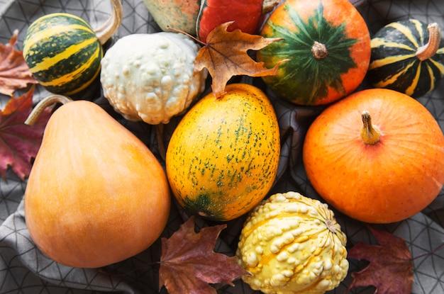 가을 구성 아늑한 가을 시즌 호박과 섬유 배경에 나뭇잎