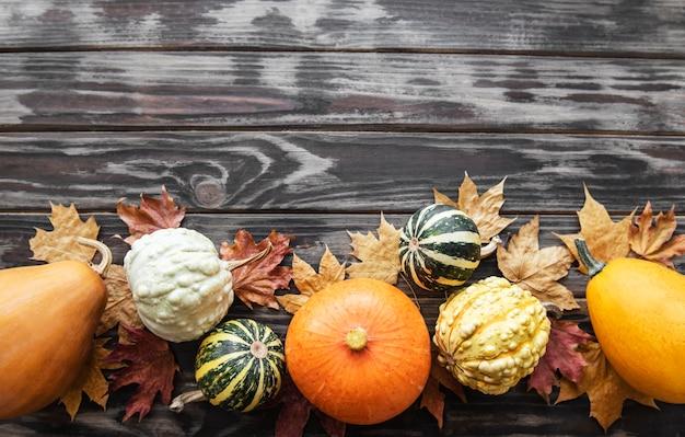 가을 구성 아늑한 가을 시즌 호박과 나무 배경에 나뭇잎