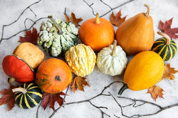Autumn composition  cozy fall season  pumpkins and leaves on concrete background