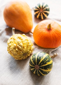 Autumn composition,  cozy fall season,  pumpkins and leaves on textile background. symbol of thanksgiving holiday,  flat lay