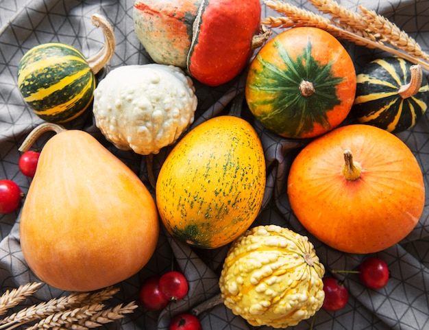 Autumn composition  cozy fall season  pumpkins and leaves on textile background