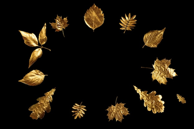 Autumn composition of different golden leaves on a black
