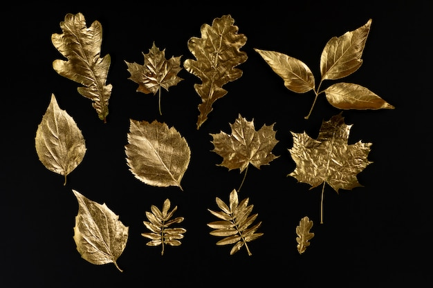Autumn composition of different golden leaves