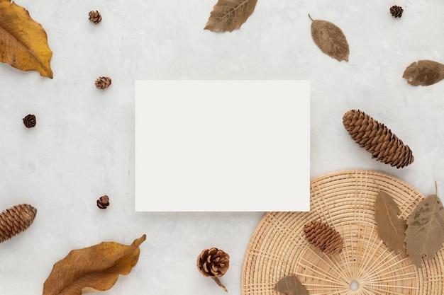 秋の構成、乾燥した葉。白い背景の上の綿の花と松ぼっくり。フラットレイ、コピースペース付きの上面図