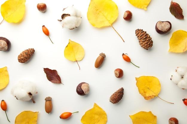 秋の構成。乾燥した葉、花、白い背景の上のベリー。感謝祭の日のコンセプト。フラットレイ、上面図、コピースペース