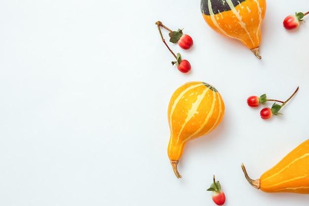 秋の構成。乾燥した葉、カボチャ、花、白い背景のナナカマドの果実。秋、秋、ハロウィーン、感謝祭の日のコンセプト。フラットレイ、上面図、コピースペース