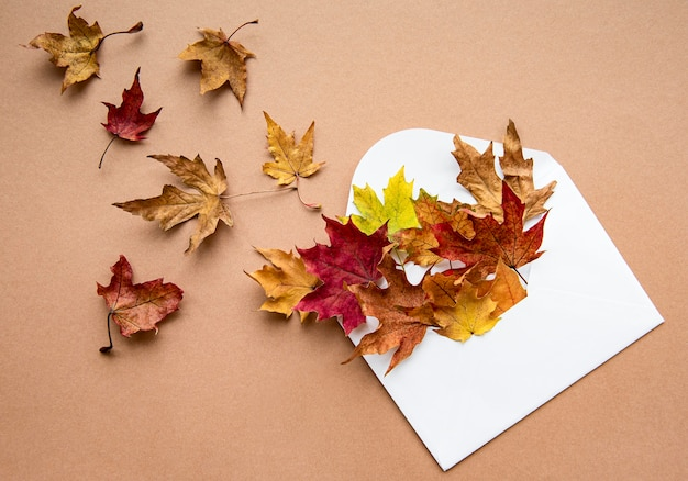 Осенняя композиция. конверт с засушенными листьями на пастельно-коричневом фоне.