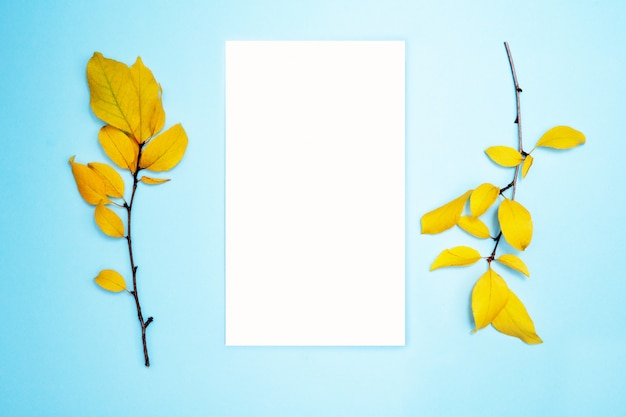 Autumn composition, frame, blank paper. two branches with yellow leaves, plum. flat lay, top view