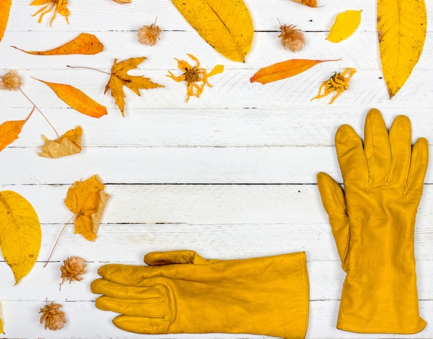 Autumn composition. frame made of autumn dried yellow leaves and gloves. copyspace