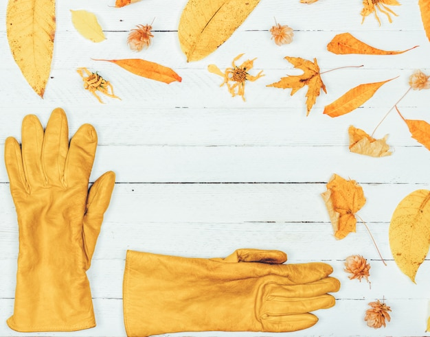 Autumn composition. frame made of autumn dried yellow leaves and womens gloves on white wood