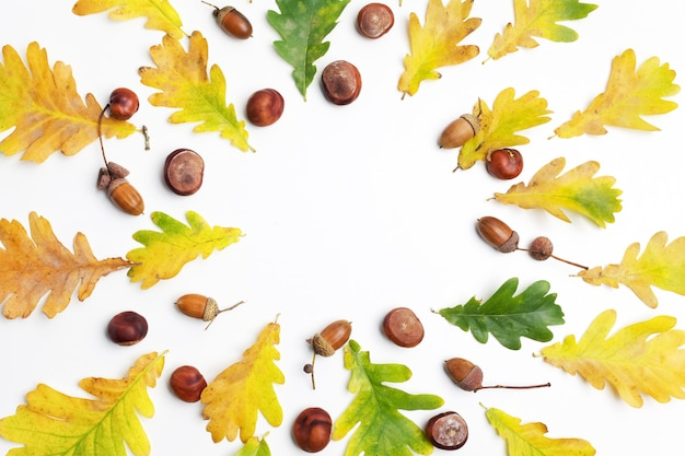 Autumn composition. frame made of autumn leaves and pine cones on white background.