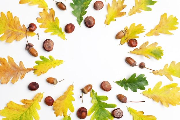 가을 구성. 단풍과 흰색 바탕에 소나무 콘으로 만든 프레임. 프리미엄 사진