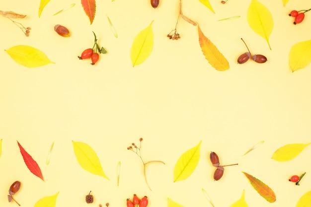 秋の組成物。秋の紅葉で作られたフレーム。
