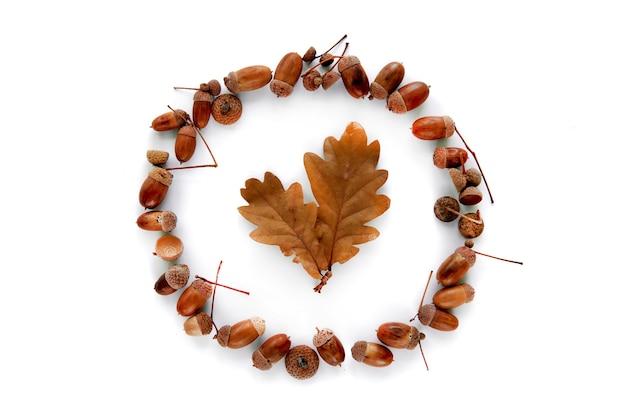 가 구성입니다. 흰색 배경에 분리된 갈색 말린 잎과 도토리로 만든 프레임입니다. 템플릿 모형 가을, 할로윈, 추수 감사절 개념. 평면 위치, 평면도, 복사 공간 배경