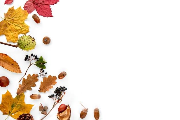가 구성입니다. 흰색 배경에 분리된 말린 잎, 나뭇가지, 솔방울, 딸기, 밤, 도토리로 만든 프레임입니다. 템플릿 모형 가을, 할로윈. 평면 위치, 복사 공간 배경