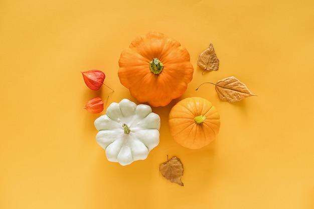Autumn composition. fresh three pattypan squash, pumpkin and autumn leaves herbarium on yellow background