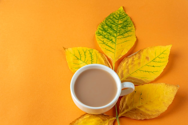 秋の構成、黄色の乾燥した葉とオレンジ色の背景にコーヒーのカップからのレイアウト。最小限の、スタイリッシュで、創造的な秋の静物。フラットレイ、コピースペース。