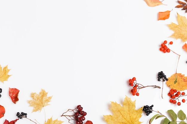 白地にチョークベリー、ナナカマド、サンザシの秋の乾燥したマルチカラーの葉とベリーで作られた秋の構成。秋、秋のコンセプト。フラットレイ、上面図、コピースペース