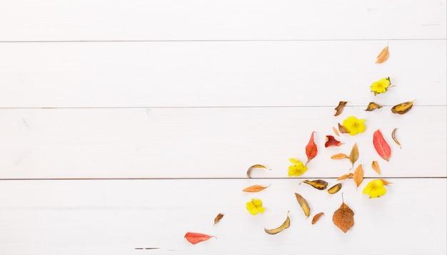 흰색 나무 배경에 가을 마른 다색 잎으로 만든 가을 구성. 가을, 가을 컨셉입니다. 평평한 평지, 평면도