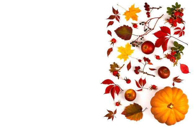 Осенняя композиция. изготовлен из осенних листьев, ягод и тыквы на белом. плоская планировка, вид сверху, копия пространства.