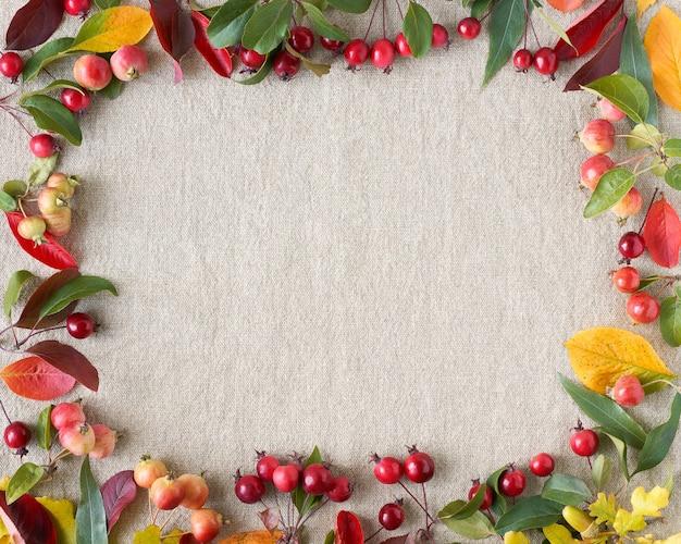 果実、小さな野生のリンゴ、ドングリ、葉の秋の組成