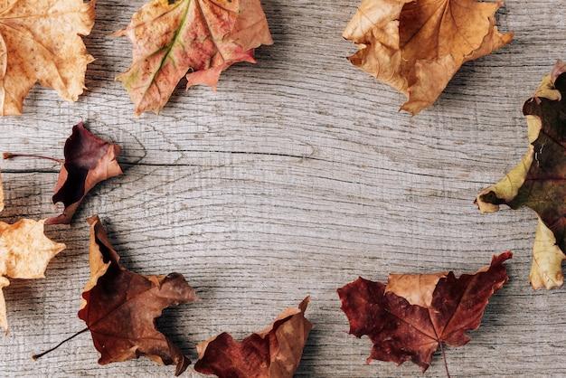 오래 된 나무 테이블에 마른 잎의가 구성