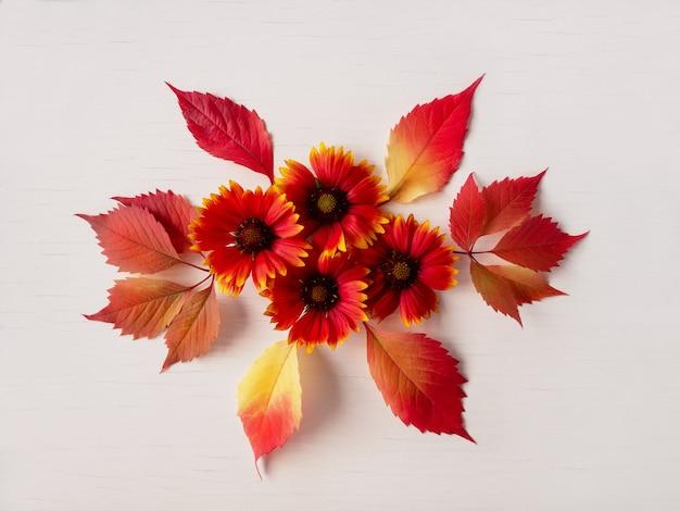 秋 赤い紅葉と花の構図