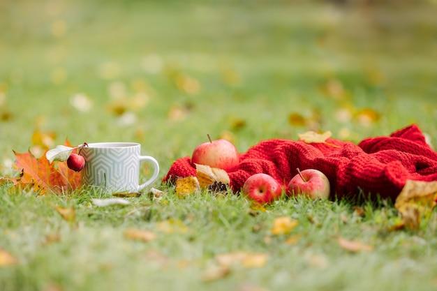 Осенняя композиция на светлом фоне природы открыта