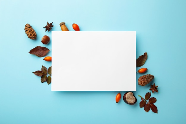 가 구성입니다. 파란 배경에 말린 꽃과 잎이 있는 빈 종이. 가을, 가을 컨셉입니다. 평평한 평지, 평면도, 복사 공간, 정사각형