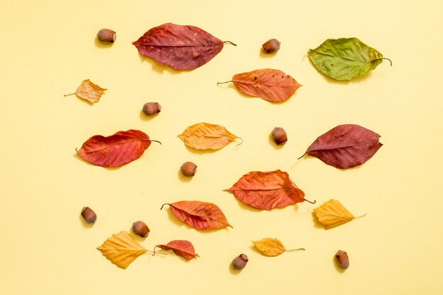 Autumn composition. pattern made of autumn golden leaves  background. flat lay, top view, copyspace