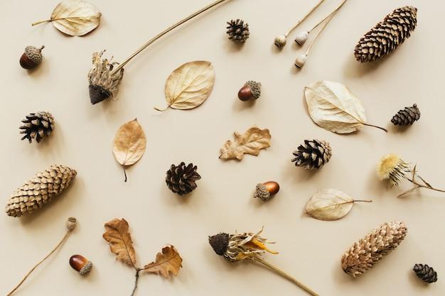 秋の構成。パステルカラーの背景にどんぐり、円錐形、乾燥した葉、乾燥した花で作られたパターン。秋、秋のコンセプト。フラットレイ、上面図、コピースペース。