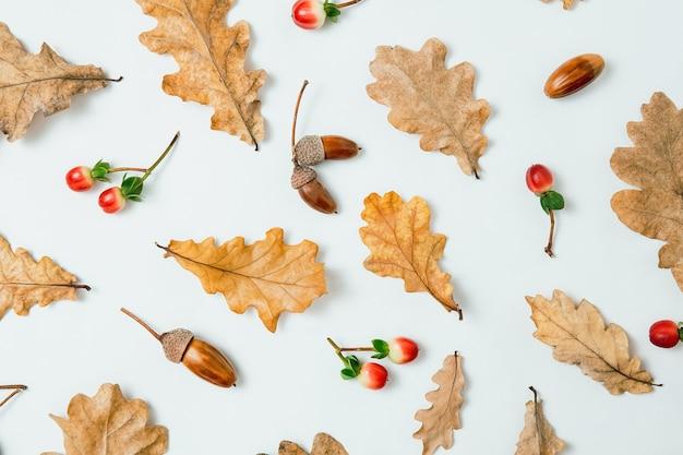 秋の構成。白い背景の上のオークの葉、どんぐり、赤いベリーのパターン。秋、秋、感謝祭の日のコンセプト。フラットレイ、上面図。