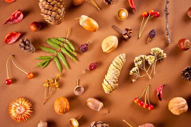 마른 잎, 원뿔, 도토리, 딸기, 견과류가 있는 가을 구성 패턴