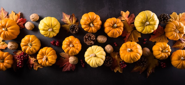 秋の構成カボチャ綿の花と暗い石の紅葉